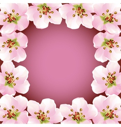 Frame with blossoming sakura japanese cherry tree vector image