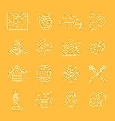Honey elements vector