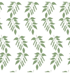 Seamless colorful pattern of chinese schisandra vector