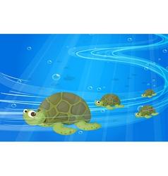Turtles under the sea vector image