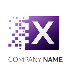letter x logo symbol in the colorful square with vector image