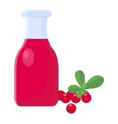 Cranberry juice illsutarion vector