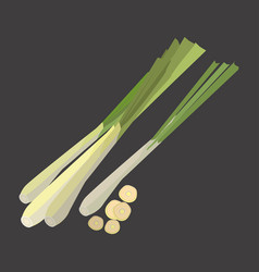 Lemon grass with slice flat design vector