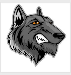 wolf head mascot isolated on white vector image vector image