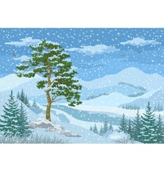 Mountain winter landscape vector