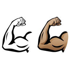 Muscular arm flexing bicep vector