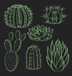 Set of isolated cactus vector