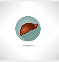 Liver icon human organ anatomy sign web button vector