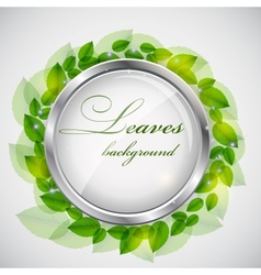 Abstract nature background with leaves vector