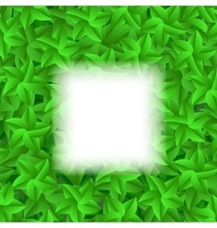Green leaves pattern vector