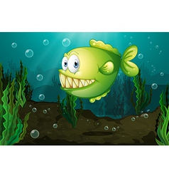 A green fish with big fangs under the sea vector image