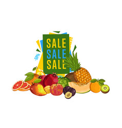 Discount sale poster with fresh fruit vector