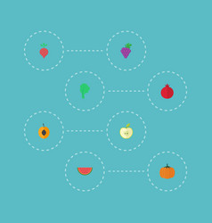 Flat icons gourd jonagold lettuce and other vector