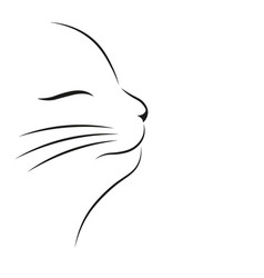 happy cute cat vector image