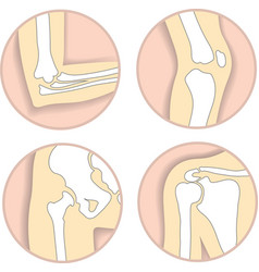 Set of human joints elbow knee hip joint vector