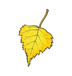 Beautiful yellow colored autumn birch leave vector image vector image