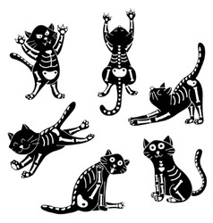 set of kittens with bones vector image