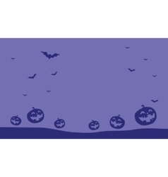 Purple backgrounds pumpkins and bat vector