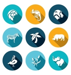 Set of africa animals icons parrot vector