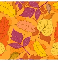 autumn leaves on orange vector image vector image