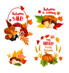 Autumn sale discount shopping icons set vector