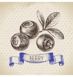 Blueberry Hand drawn sketch berry vintage vector image vector image