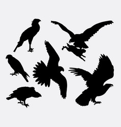 eagle hawk falcone animal silhouette vector image