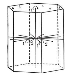 Symmetry of normal class vintage vector