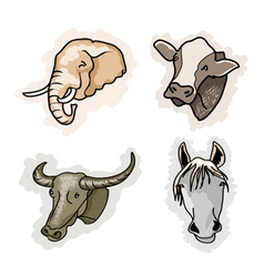 A set of benefit animal on corlors background vector