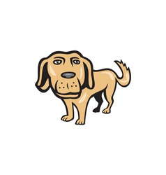 Retriever dog big head isolated cartoon vector