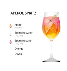 Aperol spritz cocktail vector