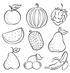 Doodle of fruit fresh set hand draw vector