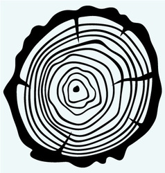 Cross section of tree stump vector image vector image