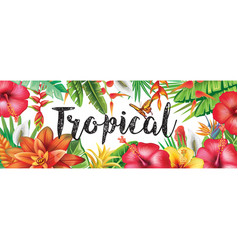 Summer banner from tropical flowers vector