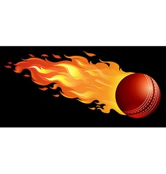 Cricket ball on fire vector image
