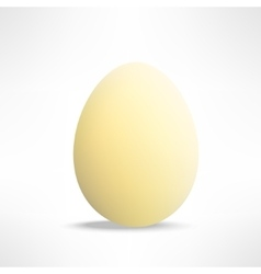 realistic yellowish egg on white background vector image