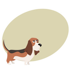 cute purebred basset hound dog character cartoon vector image vector image