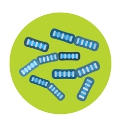 Bacteria virus icon vector