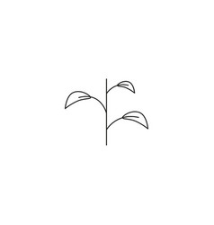 plant linear icon vector image