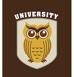 university design vector image