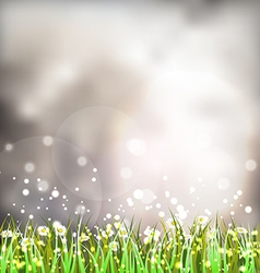 Background with Grass vector image