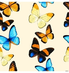 Blue butterflies seamless vector image