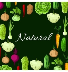 Healthy natural vegetables poster vector