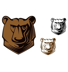 Kodiak bear mascot vector
