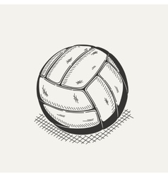 Volleyball isolated on a white background vector image