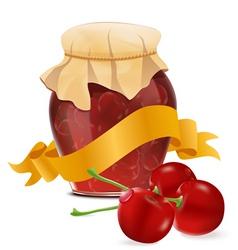 cherry jar vector image