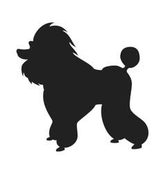 Poodle black silhouette vector