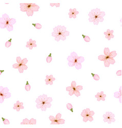 branch of sakura or cherry blossoms background vector image vector image