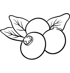 Blueberry fruits for coloring book vector