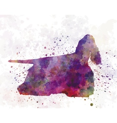 American cocker spaniel 01 in watercolor vector